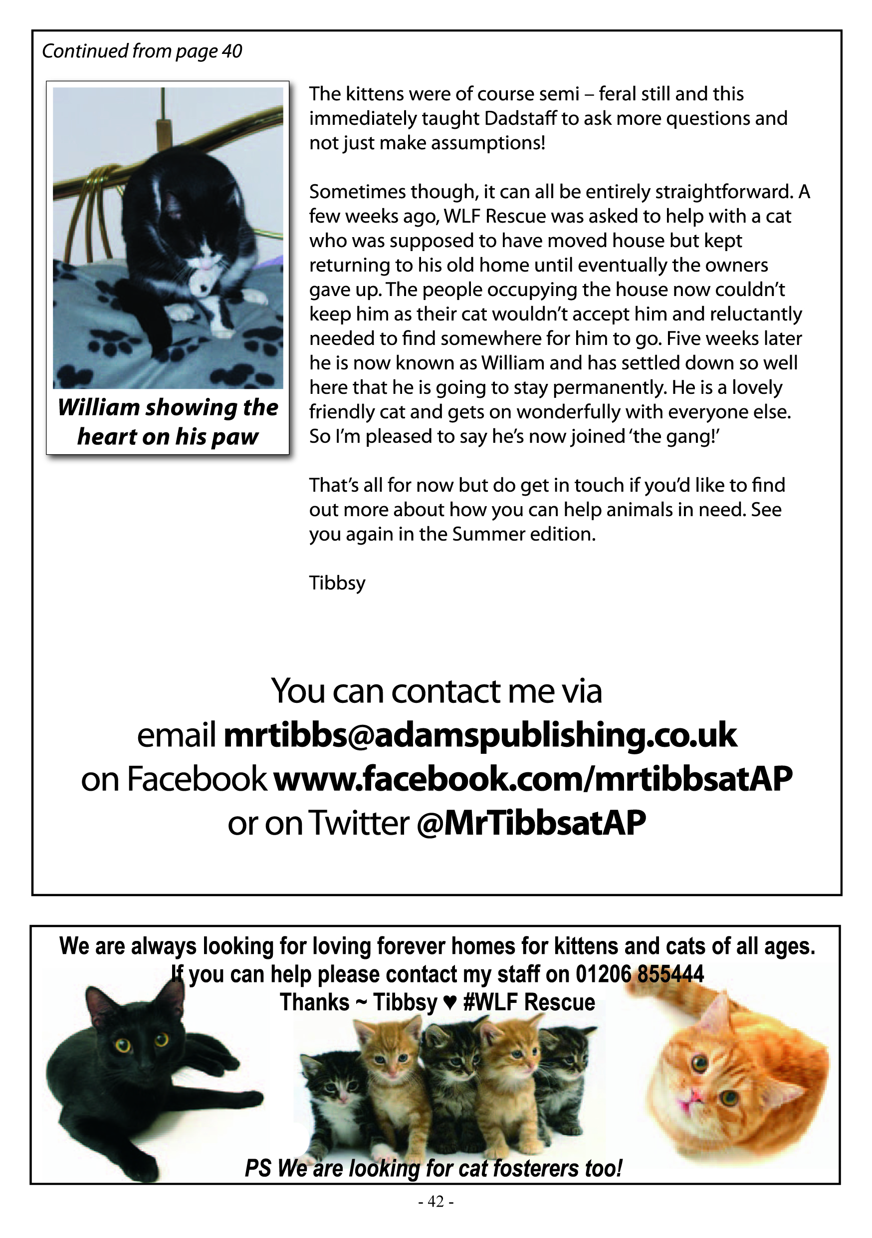 Mr Tibbs Page 2